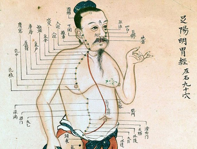 disegno agopuntura
