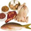 Mangiare proteine aumenta il fabbisogno di levodopa